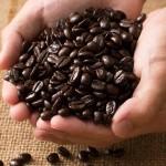 コーヒーの酸化とは?