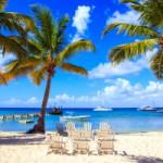コーヒーはどこからやってくる?【ドミニカ】カリブ海の楽園から届いた「ワイニープリンセサ」!!