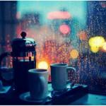 雨の日のカフェが好き❤今日は久しぶりに店頭に🐻🎶 次に立つときにはマッチョかもしれない。