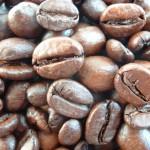 大好評のKUMAROMAの珈琲豆を取り扱ってみませんか?オリジナルブランドにも対応します。