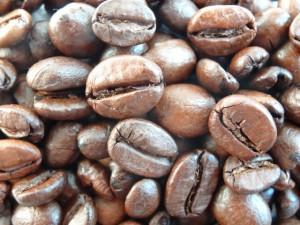 大好評のクマロマのコーヒー豆を取り扱ってみませんか?オリジナルブランドにも対応します。