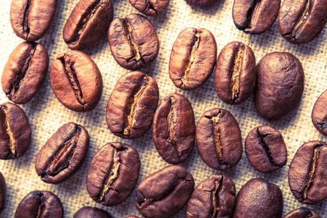 新商品のコーヒー豆は499円❣️本日から😋✨