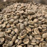 コーヒー豆の選別をしていると