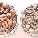 【クロップ】って知ってますか?日本には数十年熟成された珈琲が存在する!?